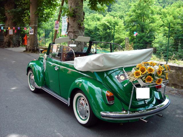 Noleggio Maggiolone Cabrio Verde con autista - 3