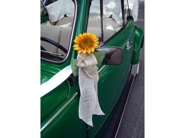 Noleggio Maggiolone Cabrio Verde con autista - 4