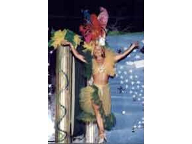 maestri di ballo, istruttori sportivi,ballerini anche prima esperienza - 3