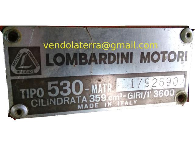 Vendo motozappa Lombardini, motore e cambio nuovi, con carrello ribaltabile e frese. - 1