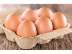 avicoltura etichette adesive - 1