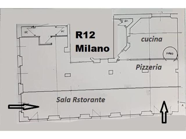 ristorante pizzeria - Milano Città Studi - 2