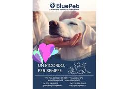 Blue pet srl -forno crematorio per animali da compagnia