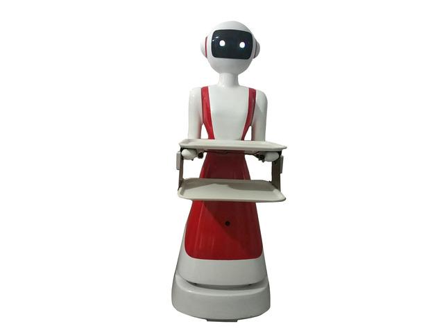 ROBOT TUTTOFARE - 4/7