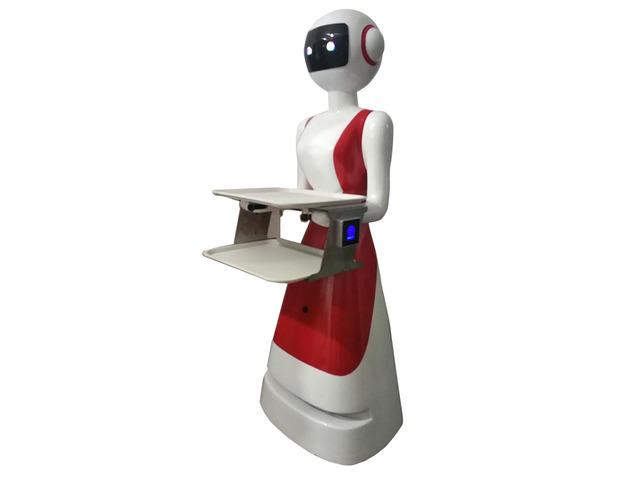ROBOT TUTTOFARE - 5/7