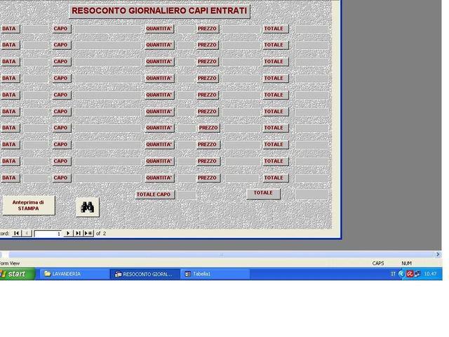 Software gestionale Gestione Lavanderia - 2