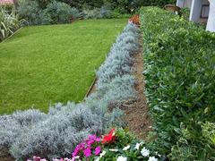 Giardiniere potatore