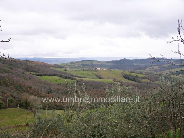 Rif. 100 casale panoramico a Gualdo Cattaneo - 9