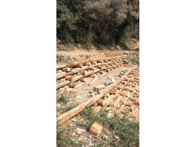 Casa ipogea open space su terreno di 9000mq (6000mq uliveto) - 9