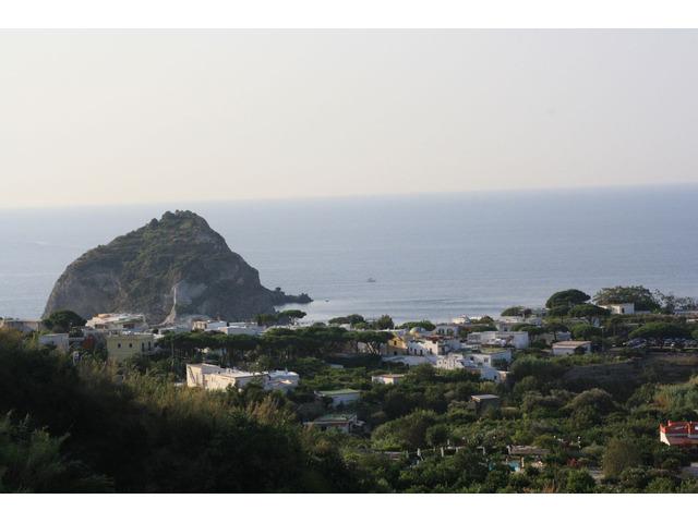 Vacanze Isola D'Ischia - 1