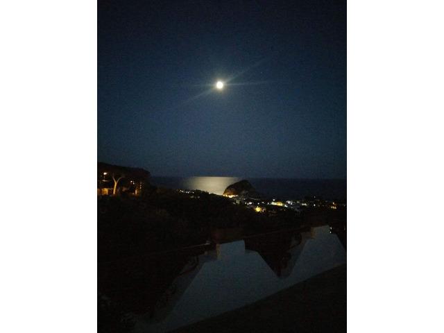 Vacanze Isola D'Ischia - 5