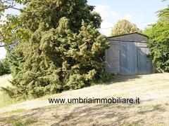 Rif. 108 casale con 4 ettari in Avigliano Umbro - 7