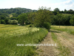 Rif. 108 casale con 4 ettari in Avigliano Umbro - 8