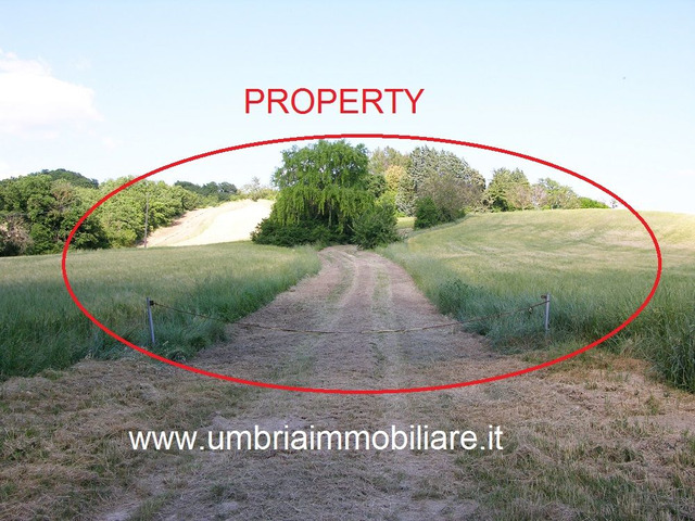 Rif. 108 casale con 4 ettari in Avigliano Umbro - 10