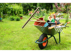 Vuoi curare bene il tuo giardino?