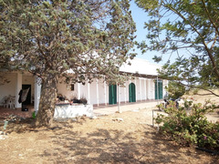 Masseria e terreno agricolo vicinanze Gallipoli LE