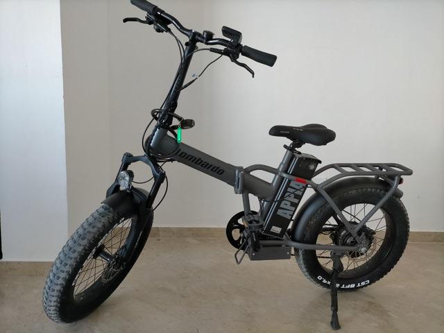 Bicicletta elettrica Far Lombardo - 1/1