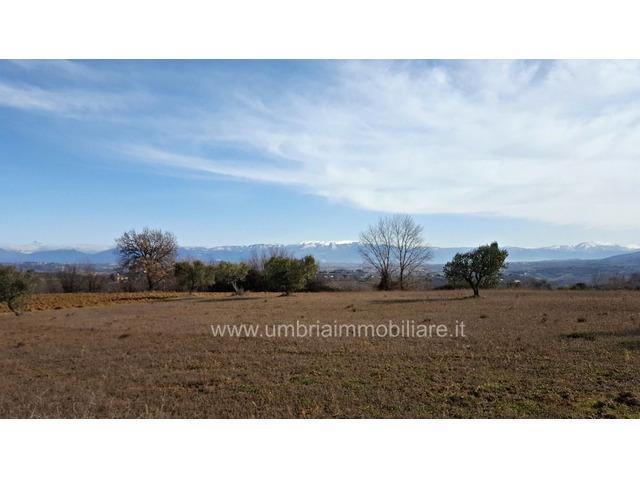 Rif. 430 terreno edificabile a San Terenziano di Gualdo Cattaneo - 2/6