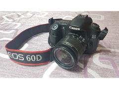 Canon Eos 60d + Obiettivo 18-55__11.000 scatti