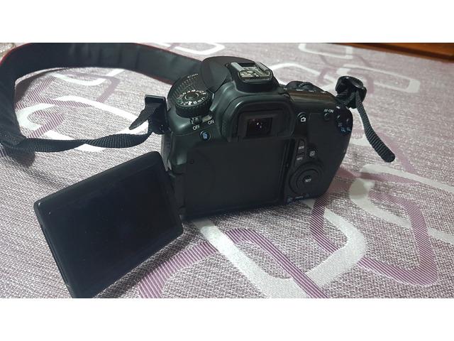 Canon Eos 60d + Obiettivo 18-55__11.000 scatti - 3