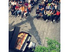 Lezioni di Pianoforte e teoria di Base Musicale