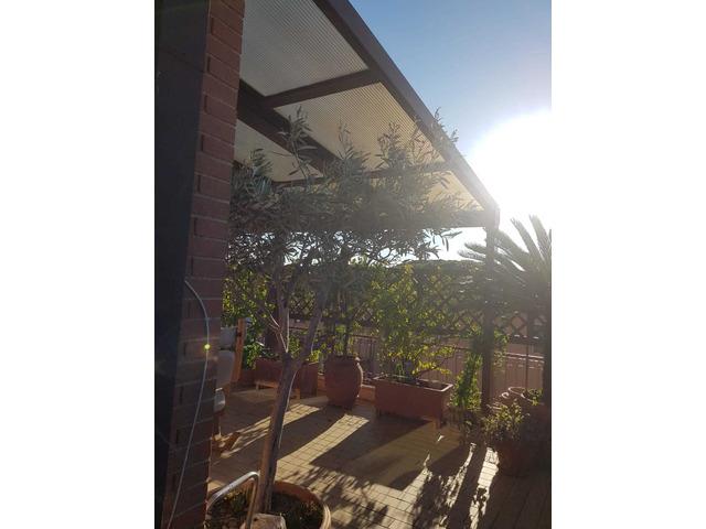 copertura per terrazzo o giardino in alluminio e policarbonato - 3