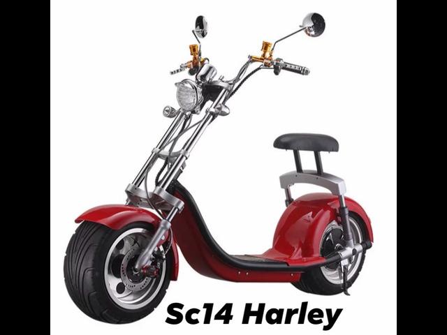 Citycoco Harley Sc 14 Modello: TARGATO E OMOLOGATO